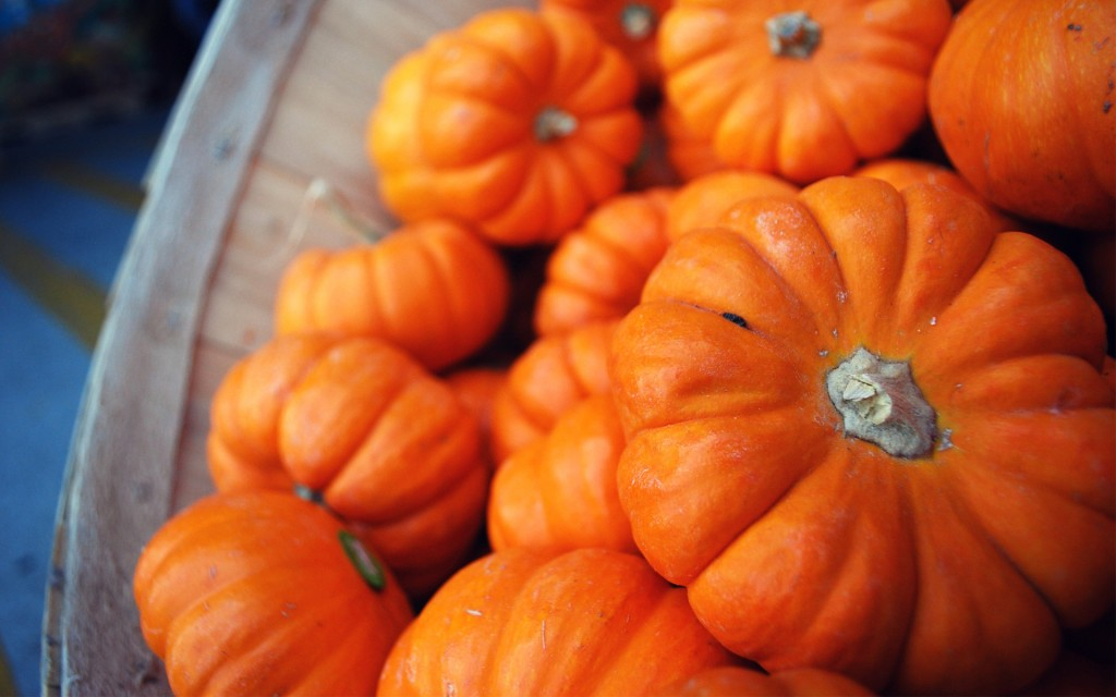 pumpkins-25778-26462-hd-wallpapers