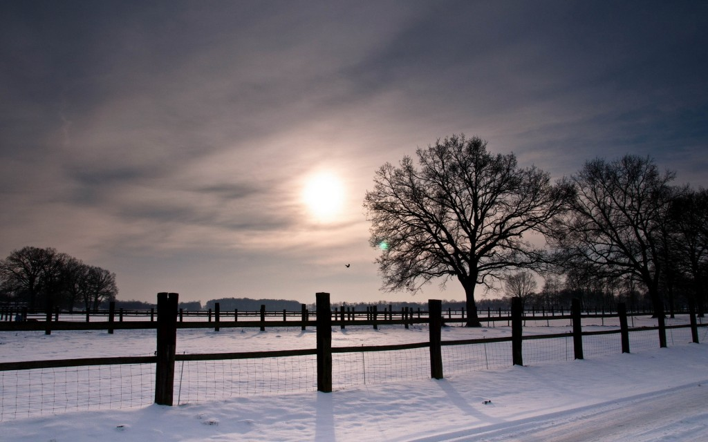 beautiful-snow-fence-wallpaper-39462-40373-hd-wallpapers