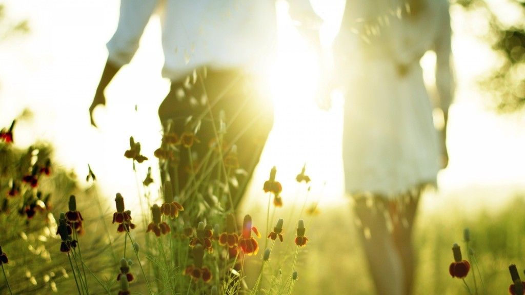 cute-sunlight-wallpaper-36064-36888-hd-wallpapers