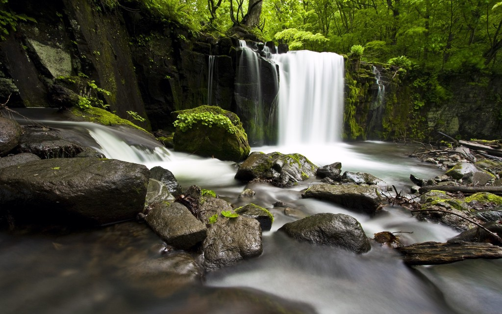 forest-waterfall-34082-34851-hd-wallpapers