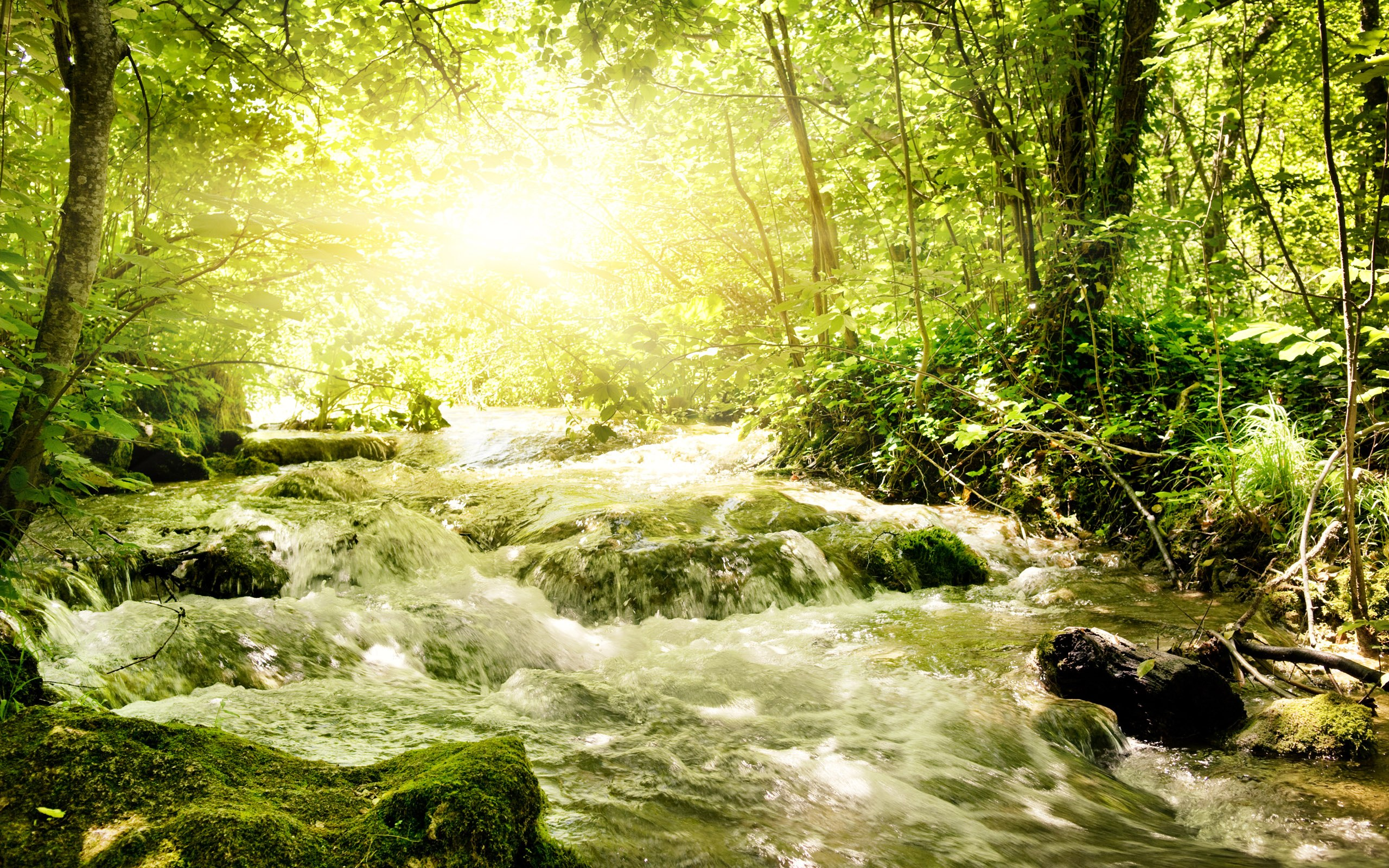 Nature Stream HD Wallpapers | Backgrounds
