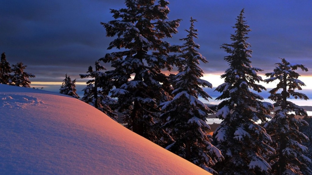 snowy-trees-wallpaper-32384-33129-hd-wallpapers