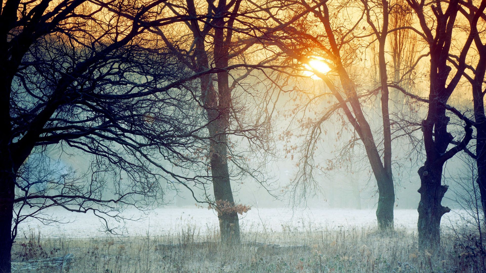 24 Gorgeous HD Winter Wallpapers