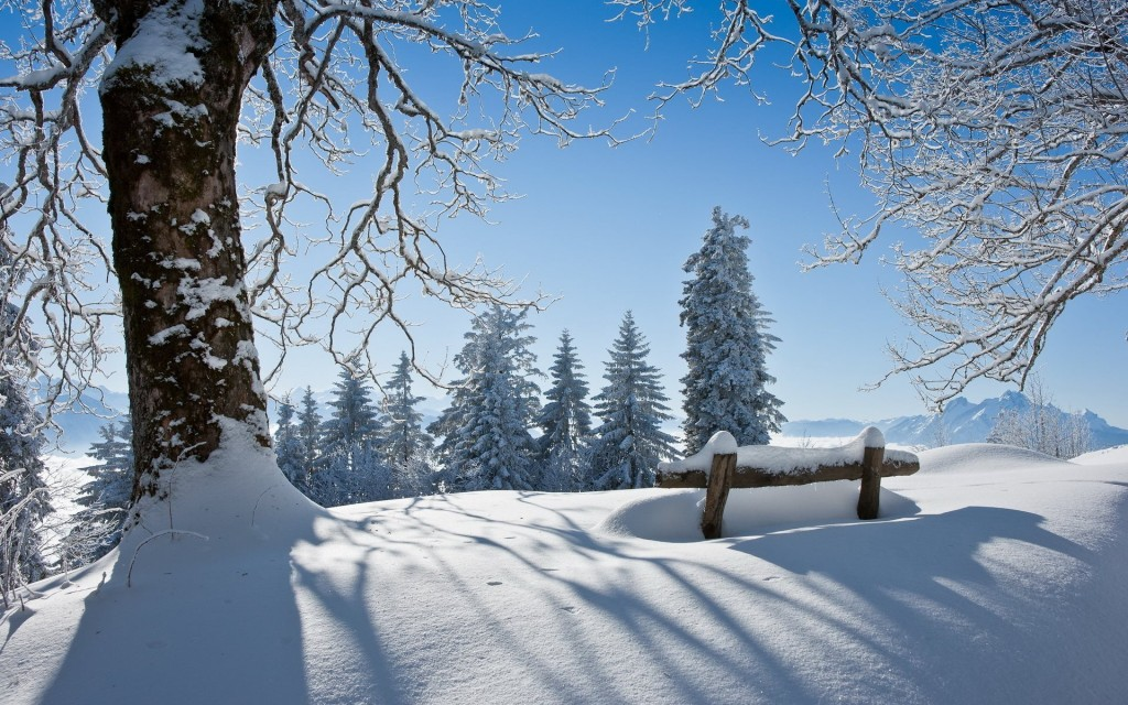 winter-scenery-18719-19198-hd-wallpapers