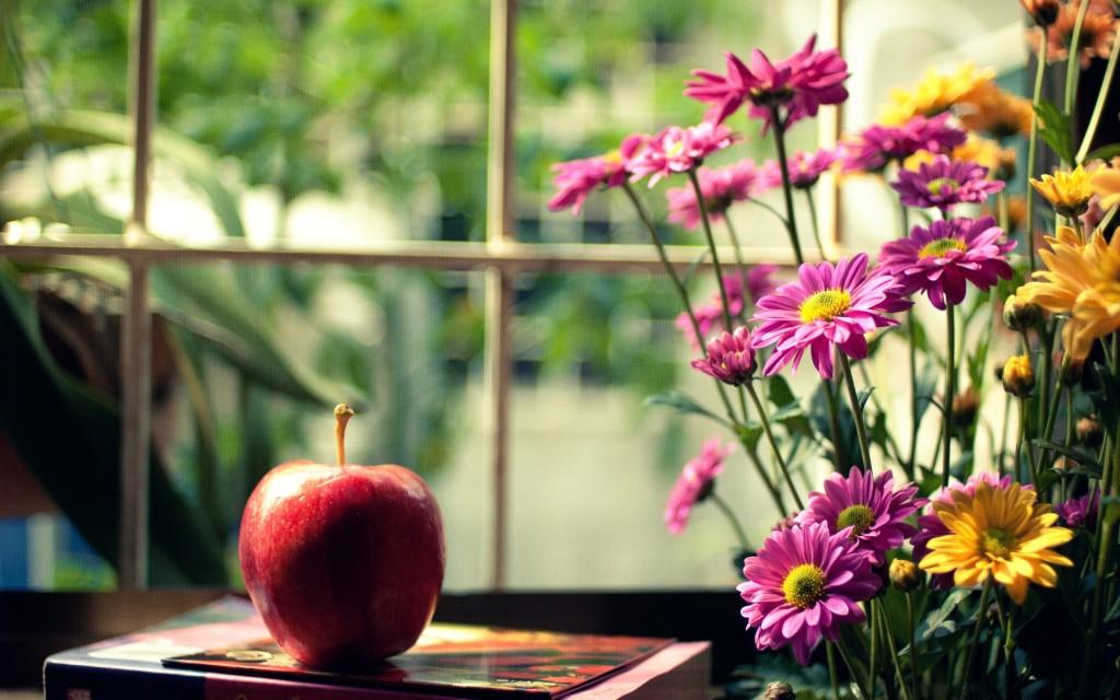 flowers-mood-wallpaper-43963-45052-hd-wallpapers