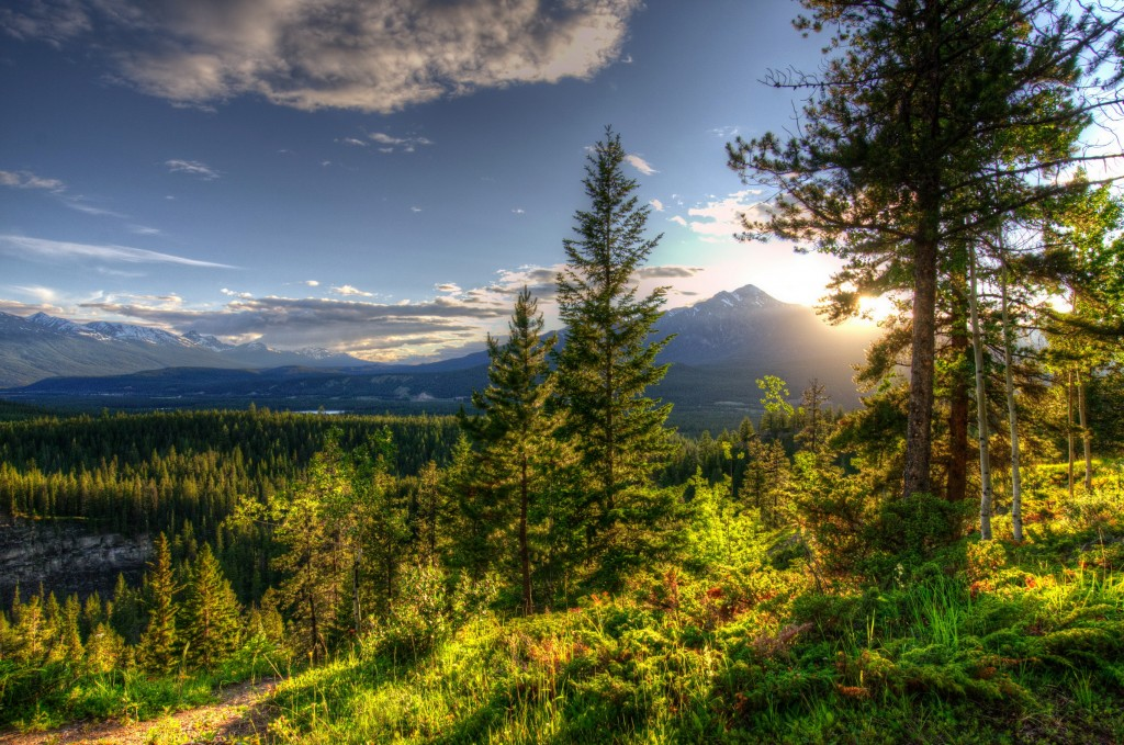 hdr-nature-background-38352-39227-hd-wallpapers