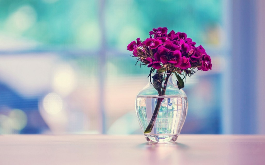 lovely-vase-pictures-39289-40194-hd-wallpapers
