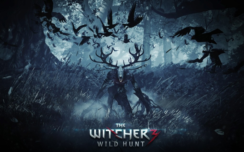the-witcher-3-wild-hunt-wallpaper-47267-48790-hd-wallpapers