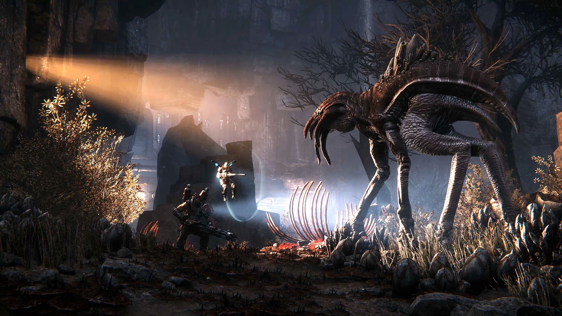 11 HD Evolve Wallpapers