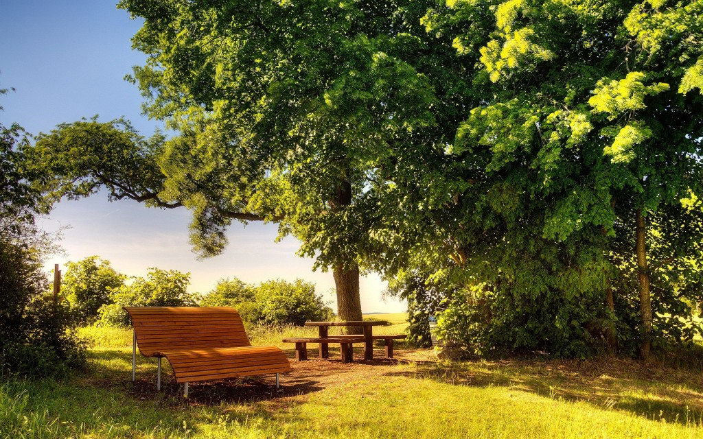bench-wallpaper-background-49058-50712-hd-wallpapers