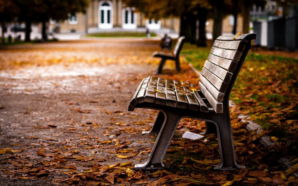 benches-31642-32377-hd-wallpapers