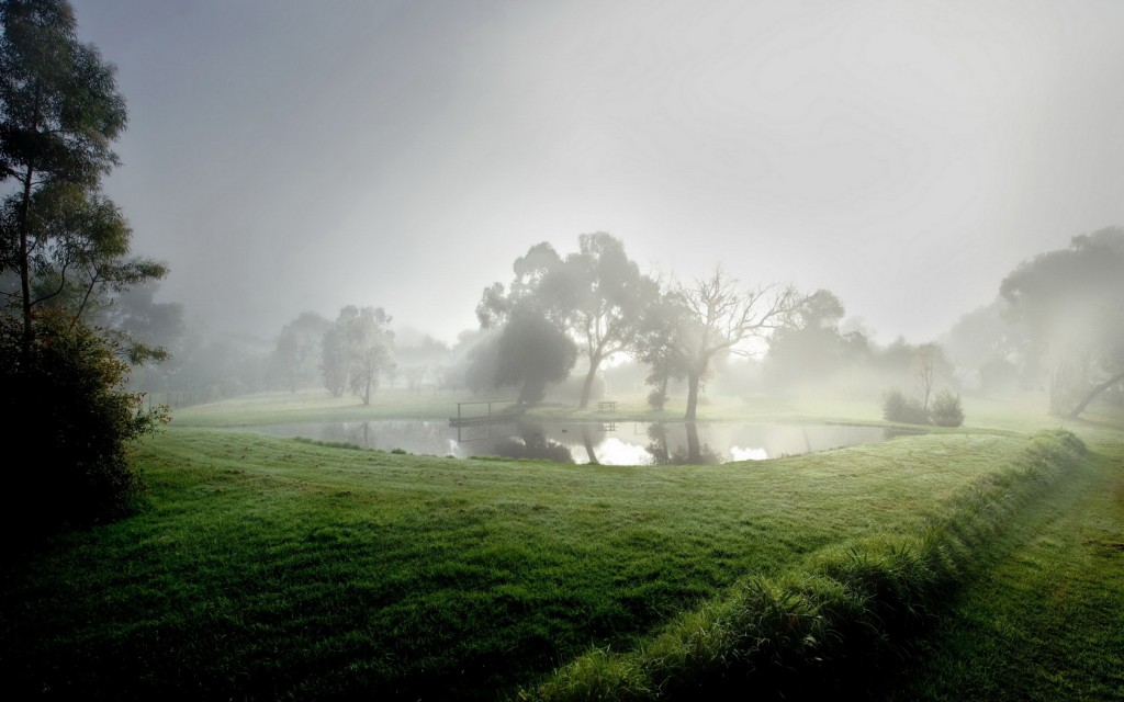 fog-pictures-36627-37462-hd-wallpapers