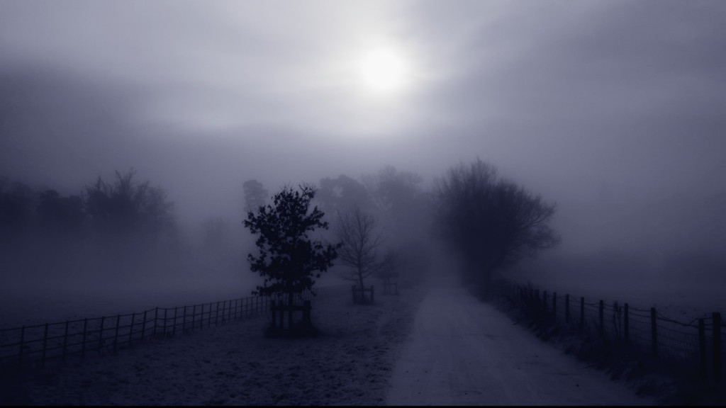 fog-wallpapers-36630-37465-hd-wallpapers