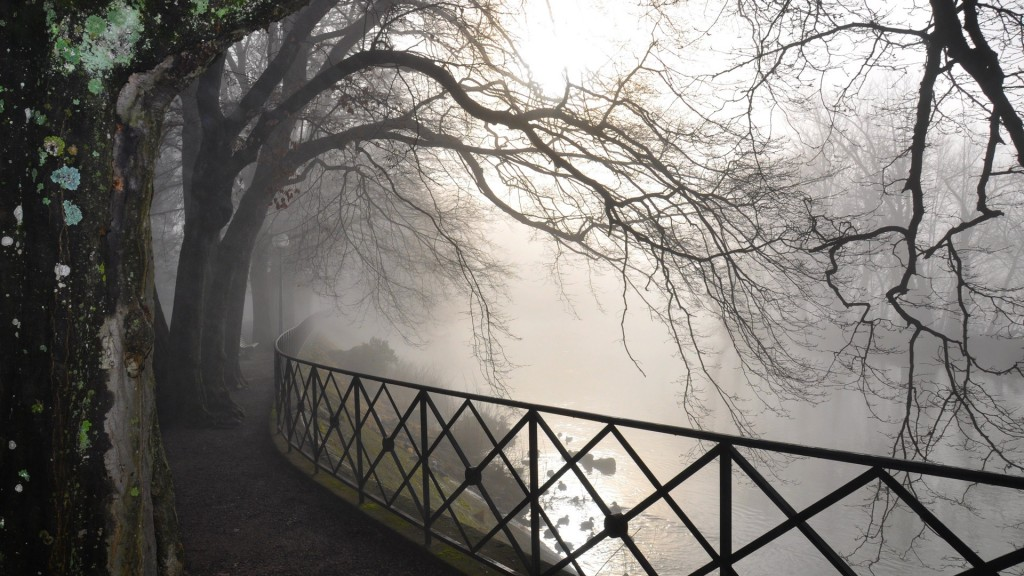 fog-wallpapers-36642-37477-hd-wallpapers