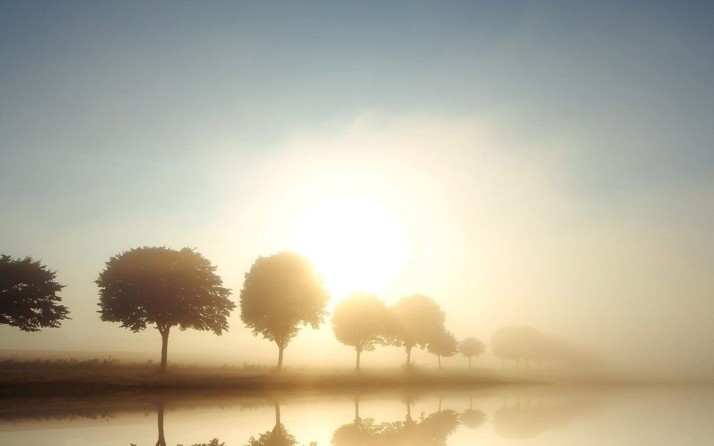 free-fog-wallpapers-36649-37484-hd-wallpapers