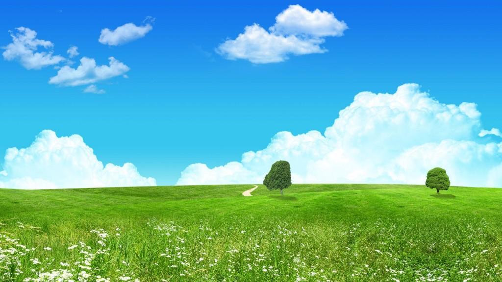 free-summer-wallpaper-5262-5384-hd-wallpapers