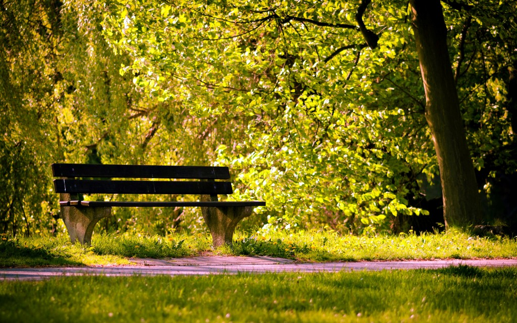 nature-bench-wallpaper-44617-45747-hd-wallpapers