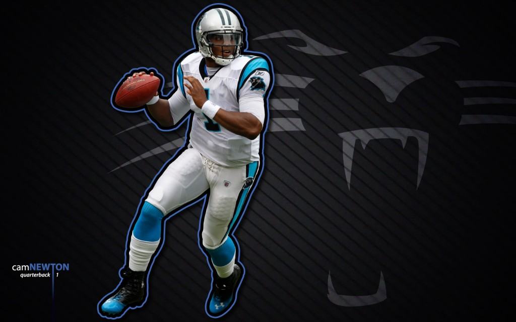 panthers-wallpaper-14569-15033-hd-wallpapers