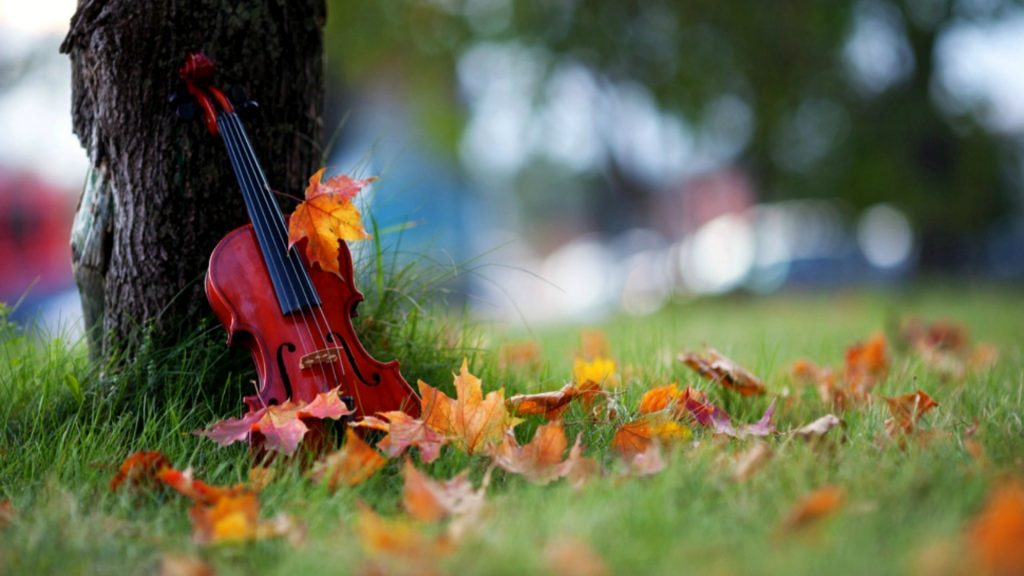 violin desktop pictures wallpapers