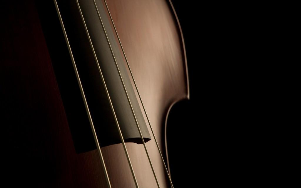 violin wallpapers wallpapers