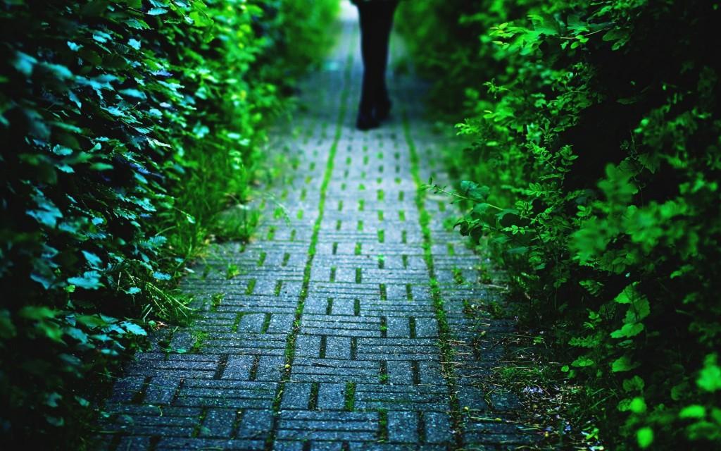 beautiful-pavement-wallpaper-38801-39689-hd-wallpapers