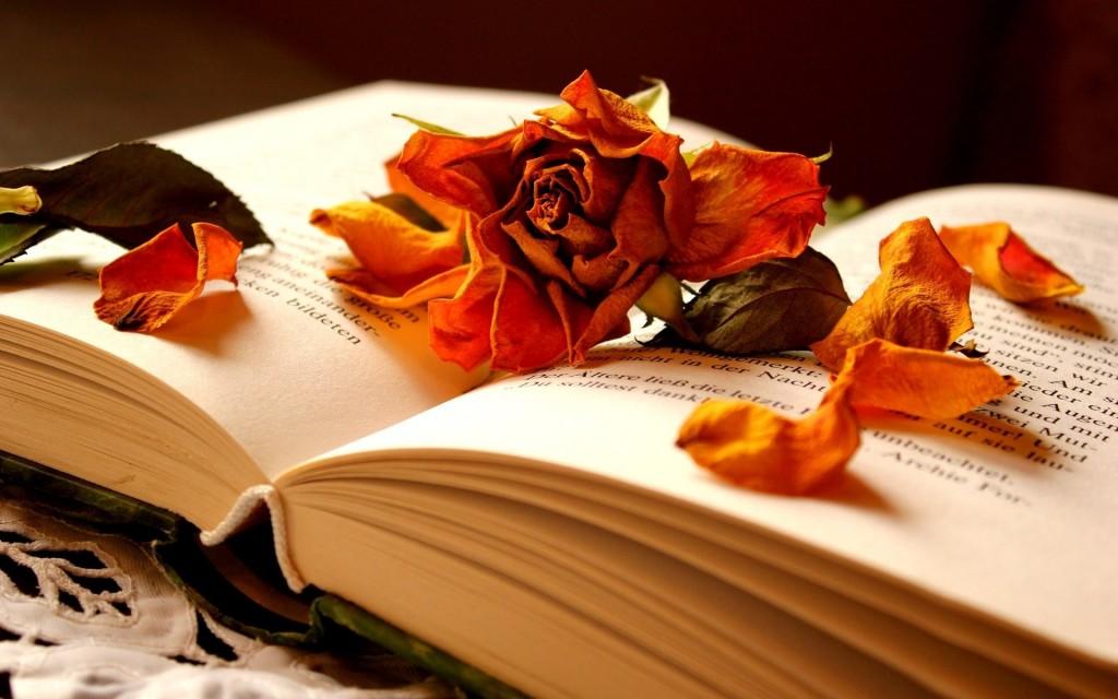 book-wallpaper-41792-42774-hd-wallpapers