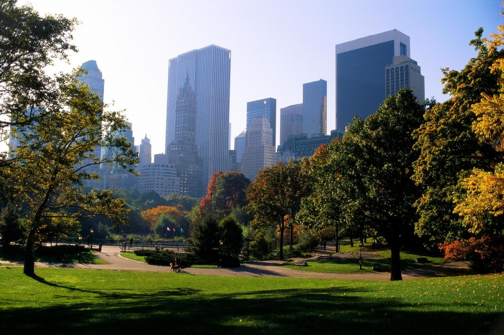 central-park-wallpaper-22019-22575-hd-wallpapers