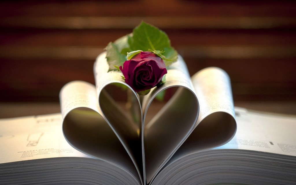lovely-book-close-up-wallpaper-43602-44662-hd-wallpapers