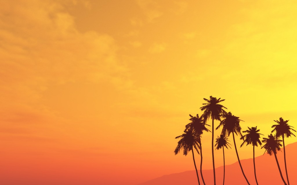 palm-tree-desktop-wallpaper-49767-51446-hd-wallpapers