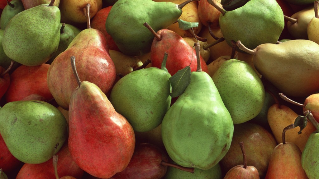 pears fruit wallpapers