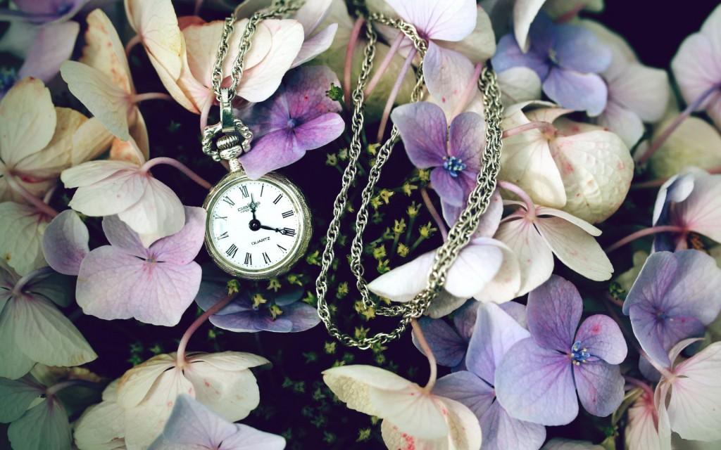 pretty-pocket-watch-wallpaper-45052-46222-hd-wallpapers
