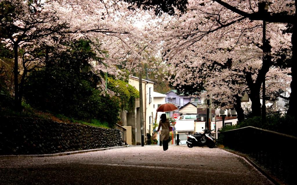 sidewalk-desktop-wallpaper-49829-51509-hd-wallpapers