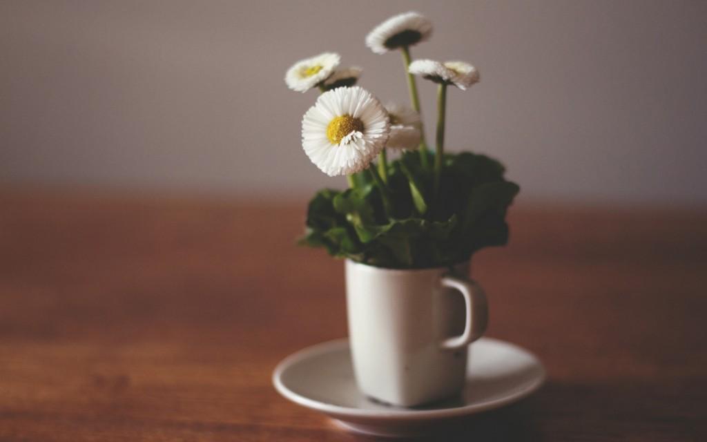table-flowers-wallpaper-40134-41071-hd-wallpapers