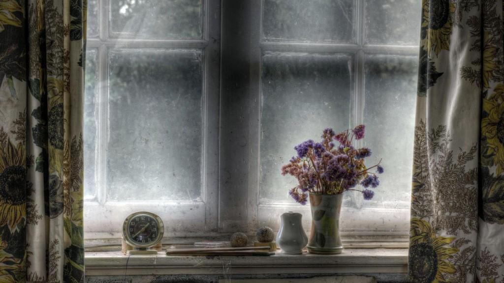 Still Life On A Window Sill Hdr HD Desktop Background