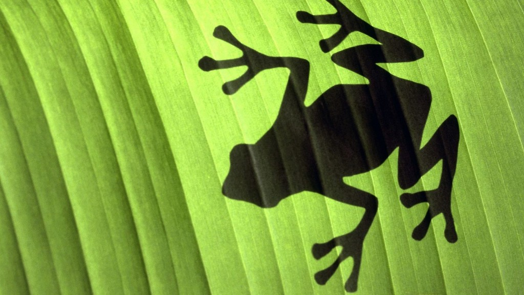frog shadow wallpapers