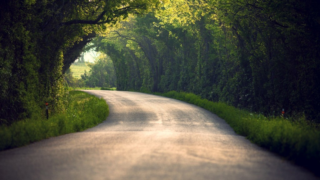 nature tunnel wallpapers