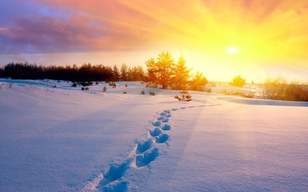 winter-footprints-wallpaper-50183-51870-hd-wallpapers