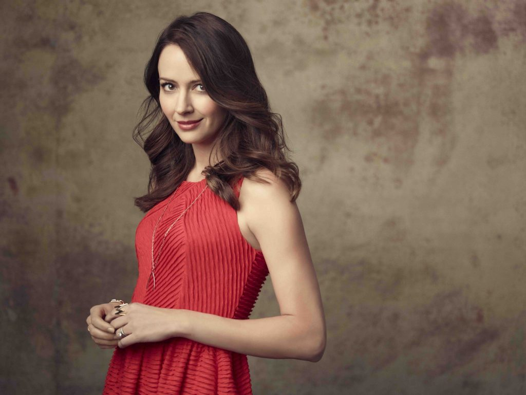 amy acker computer wallpapers