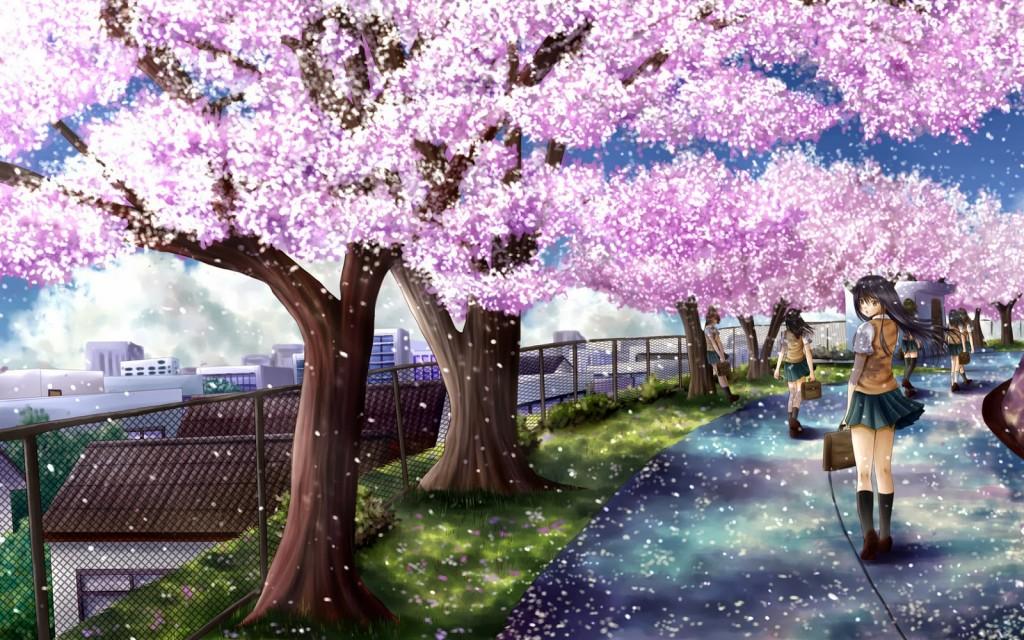 anime sakura trees wallpapers