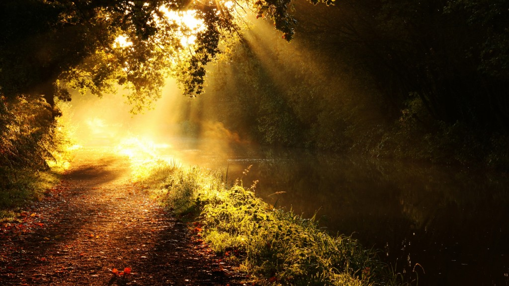 sunbeam hd wallpapers