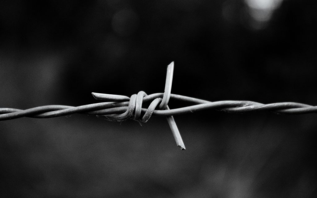 monochrome barb wire wallpapers