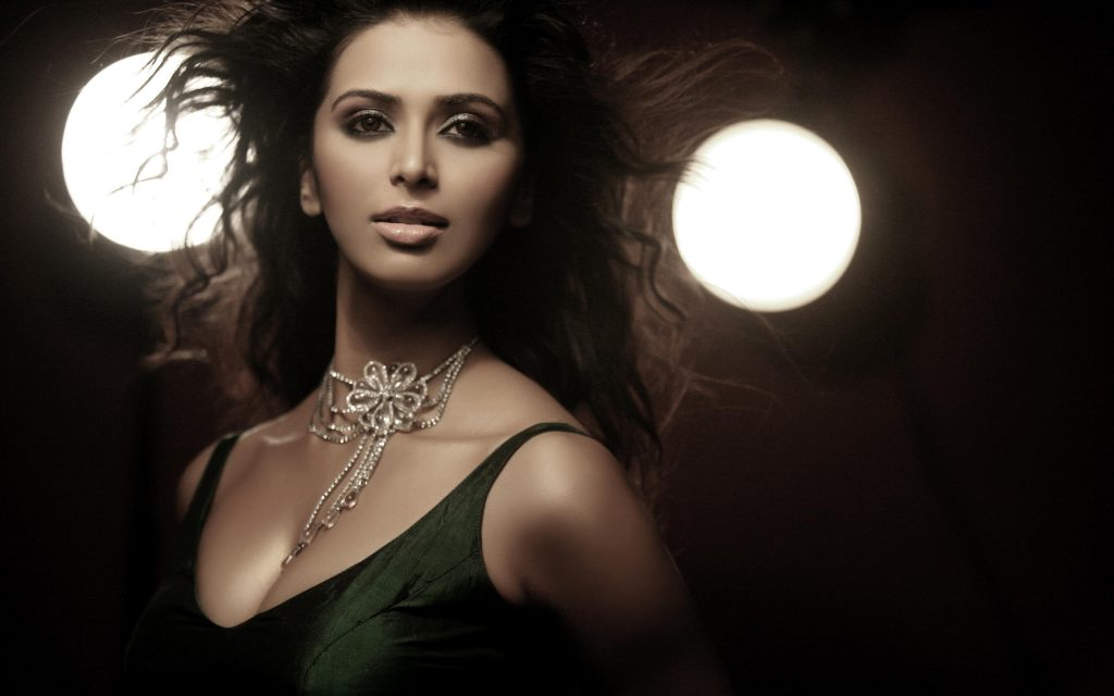 hot meenakshi dixit wide wallpapers