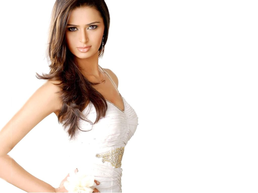 sexy meenakshi dixit wallpapers