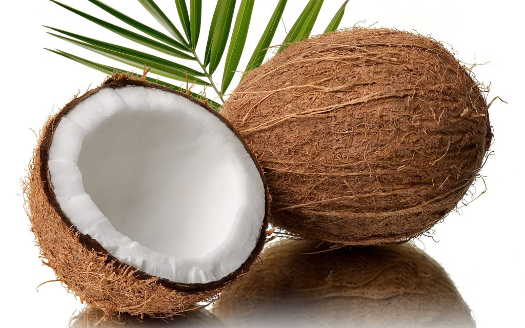 free coconut wallpapers