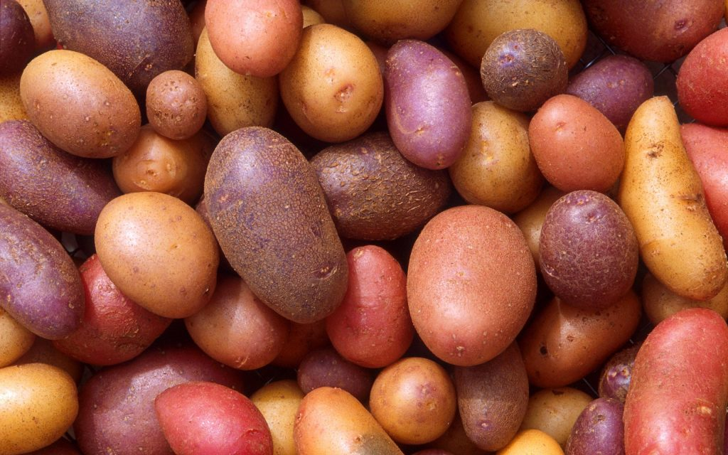 Potato Wallpapers